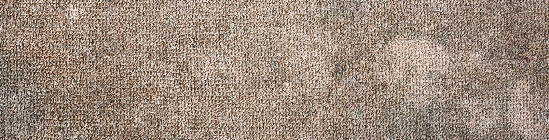Mold Removal on Indoor/Outdoor Carpet | Blog | Mold Off®