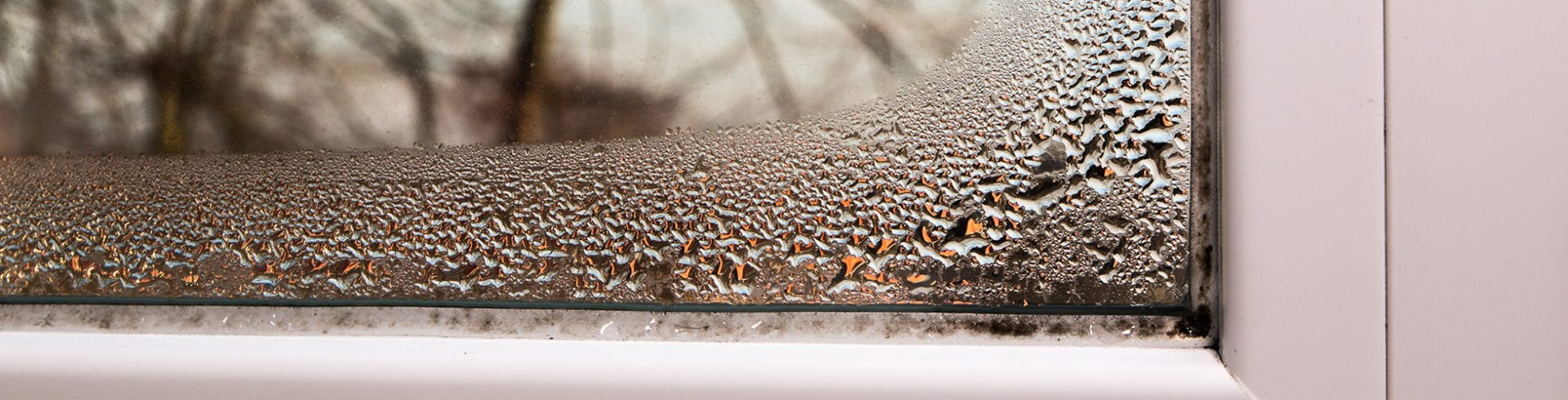 How Moisture Enters Buildings & Causes Mold | Blog | Mold Off®